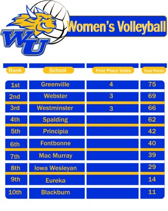 womenswebstersvolleyy