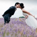 prewedding shoot in un campo di lavanda