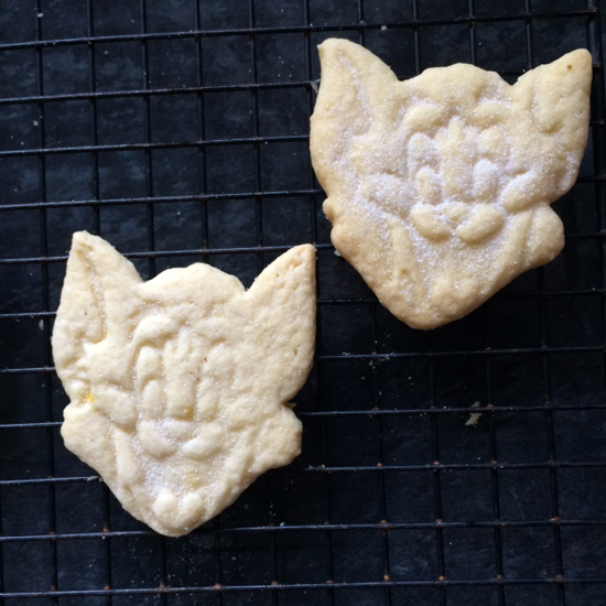 Lemon shortbread kitten biscuits