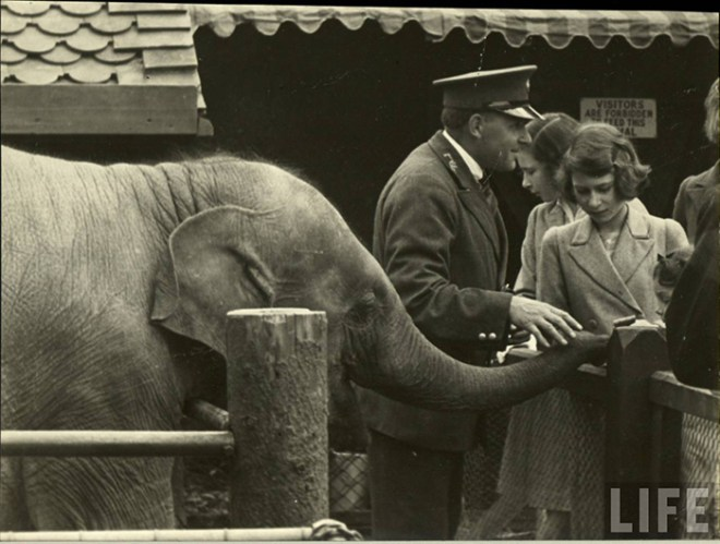 Princess Elizabeth and an elephant