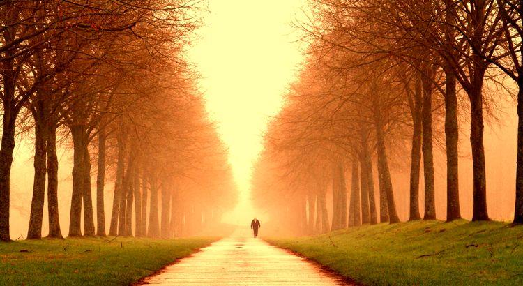 Wo kämen wir hin, wenn jeder sagte, wo kämen wir hin und keiner ginge, um zu sehen, wohin wir kämen, wenn wir gingen. - Zitat von Kurt Marti