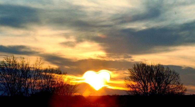 In Anbetracht aller vergangenen und aktuellen Gegebenheiten der Erde, bin ich gewillt dafür, dass alle nur noch mit dem Herzen denken. - Esragül Schönast