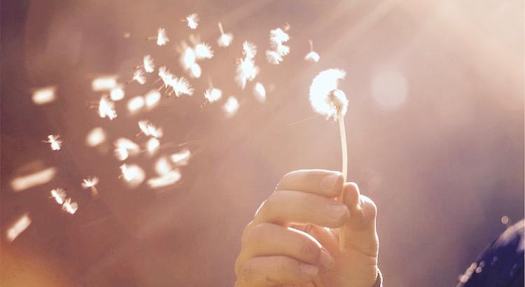 Manchmal muss man erst am Abgrund stehen, um zu erkennen, wer einen stoßen und wer einen aufhalten würde. Im Laufe meines Lebens habe ich Siege errungen und Schiffbruch erlitten. Hinfallen und aufstehen gelernt, weinen und lachen. Ich war unterwegs zu den Sternen und so mancher siebter Himmel wurde dann doch nicht meiner. So Träume ich heute nicht ganz so schnell, bin auch ein wenig leiser als zuvor, wacher und vorsichtiger und doch bin ich immer noch neugierig genug … Ich bin zu alt um nur zu spielen – zu jung, um ohne Wünsche zu sein! Die Zeit verändert Menschen, die Zeit verändert Situationen. Die Zeit ändert Gefühle, die Zeit ändert Träume und Gedanken. Es ist wahr, das wir nicht schätzen was wir haben, bis wir es verlieren. Aber wahr ist auch, das wir nicht wissen was wir vermissen, bis es uns begegnet. Wer nur mit dem Verstand lebt, hat das Leben nicht begriffen.
