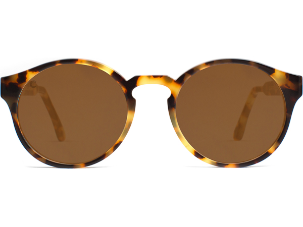 Capital_Eyewear_Acetate_Sunglasses_3