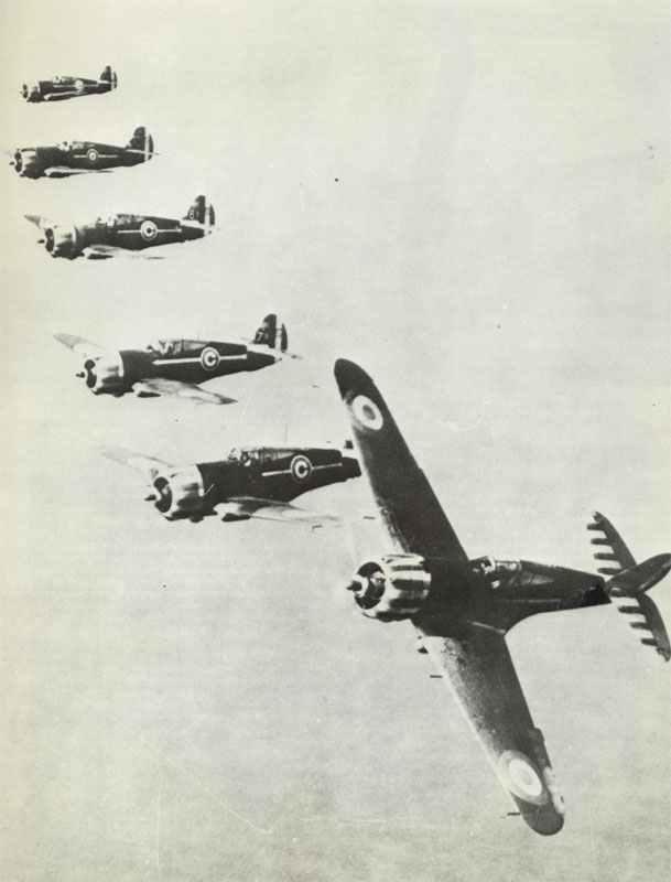 Curtiss Hawk Jagdflugzeuge der Vichy-französischen Luftwaffe