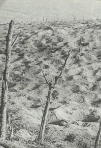 Erde von Verdun