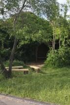 School garden project