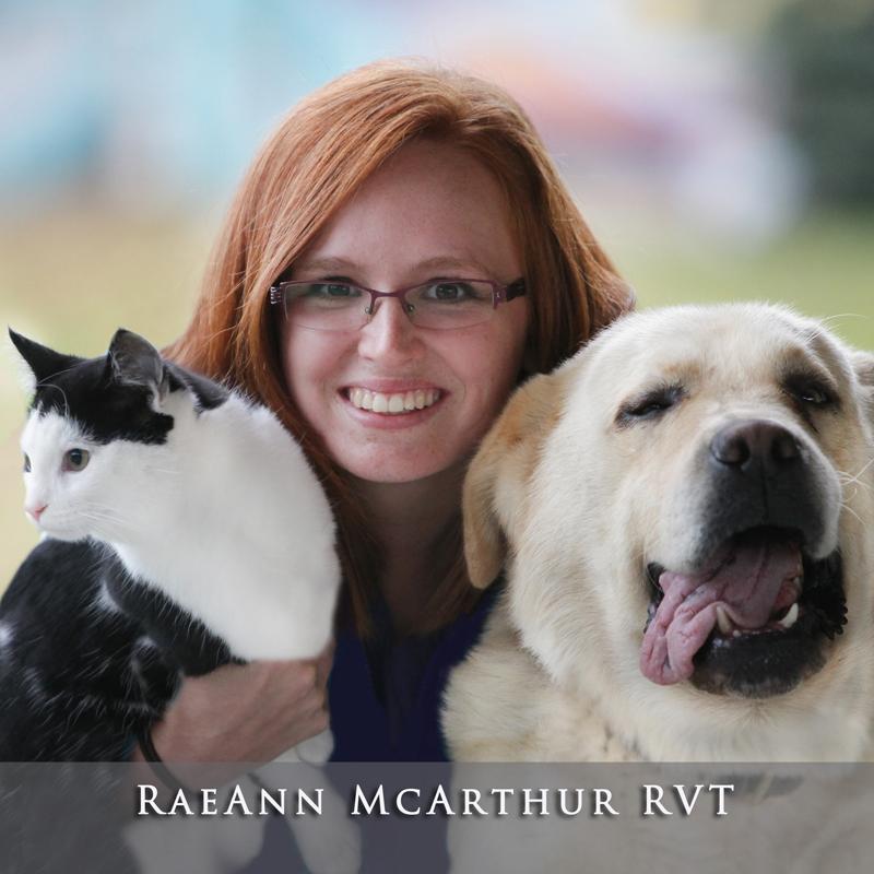 RaeAnn McArthur RVT