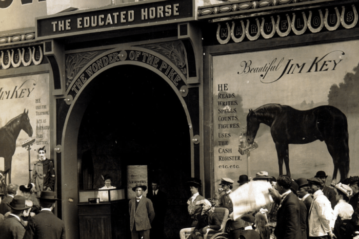 Jim Key, The Educated Horse at the 1904 World's Fair