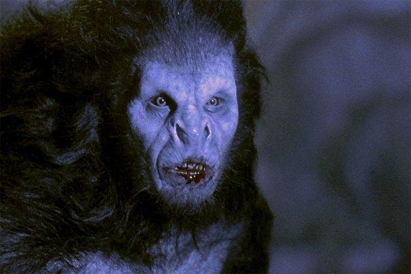 Dracula werewolf