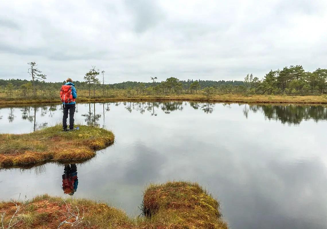 estland_moorschuhwanderung_soomaa-nationalpark_01