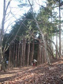 われらがWFR ★ 早稲田大学山岳サイクリング部動画日記-2009初5