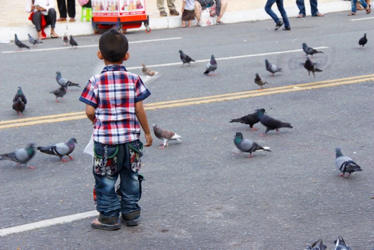Children Feeding Birds