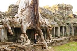 Big Tree Temple Angkor