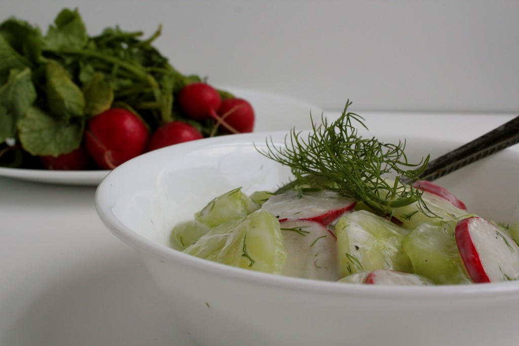 German Cucumber Salad 4