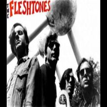 The Fleshtones + Sir Bald Diddley and his Ripcurls + The Embrooks