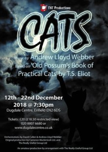 Cats by TNT Productions, Dugdale, Enfield, London, Andrew Lloyd Webber, Musical