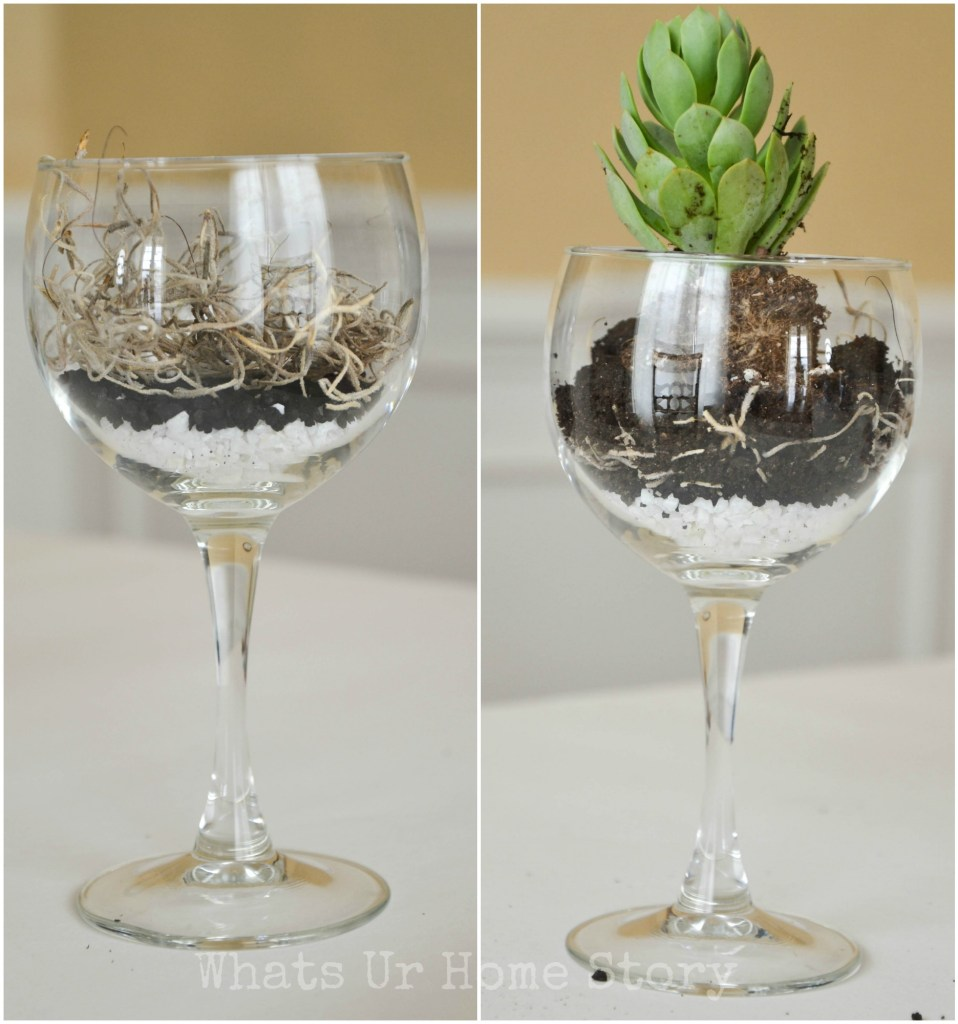 wine glass planter, wine glass succulent planter