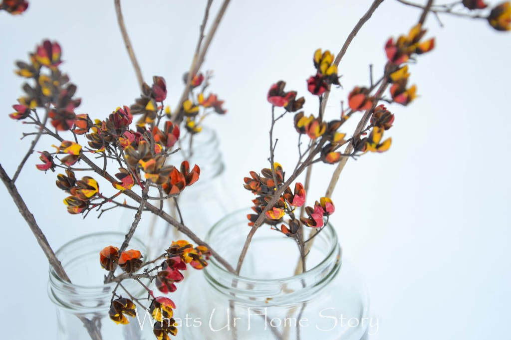 paint dried flowers