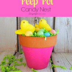Peep-Pot-Candy-Nest