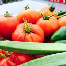 vegetable gardening--2