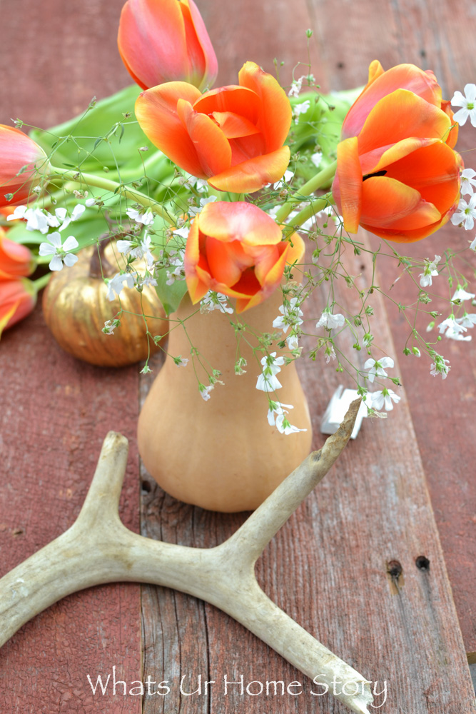 butternut squash makes for a great vase
