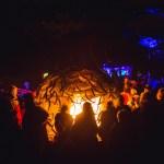 Fireball Rock Garden2