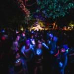 Illum Forest Night Crowd