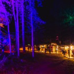 Illum Forest Porch Gallery 2