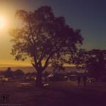 Picnic Sunset 2013