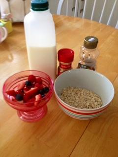 organic porridge-ingredients