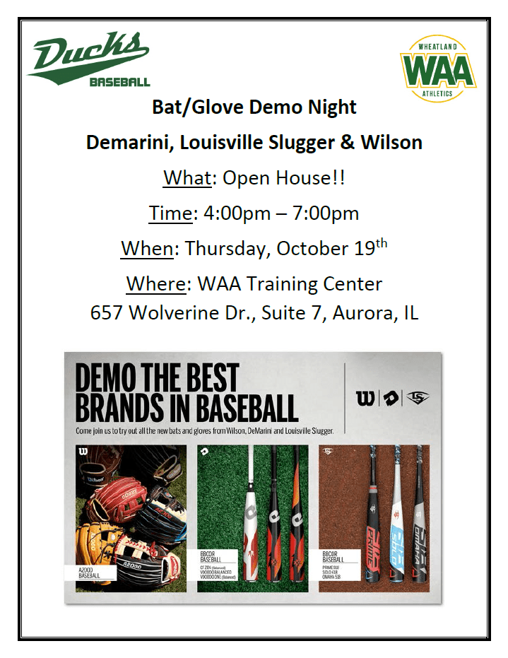 demo night flyer pic