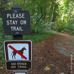 No dogs...Bah, Humbug!