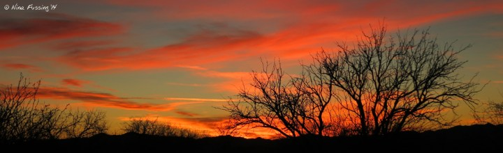 Panorama sunset from our new site