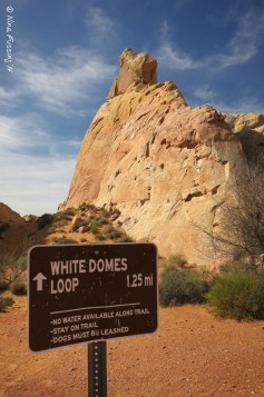 Beginning of the White Domes Trail