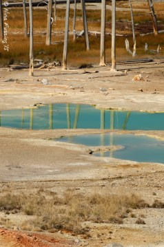 Blue reflections in Norris Basin