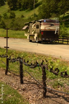 Winery parking
