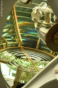 A glimpse into the bivalve Fresnel Lens