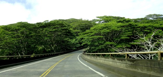 The Kalihiwai Bridge