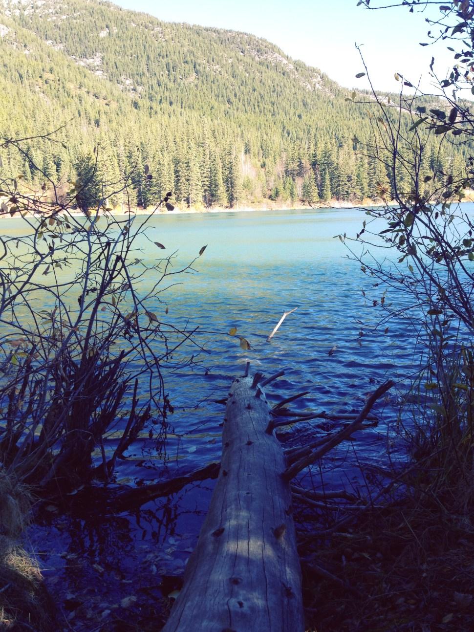 Grotto Pond