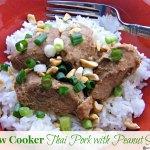 Slow Cooker Thai Pork with Peanut Sauce