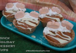 Quick Holiday Dessert Cups