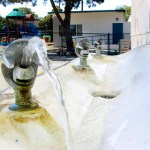 Maybe We Were Wrong – A Closer Look at Why We Call it a Bubbler in Wisconsin