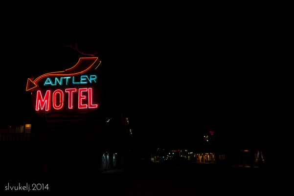 Stacey Leece Vukelj | The Antler Motel