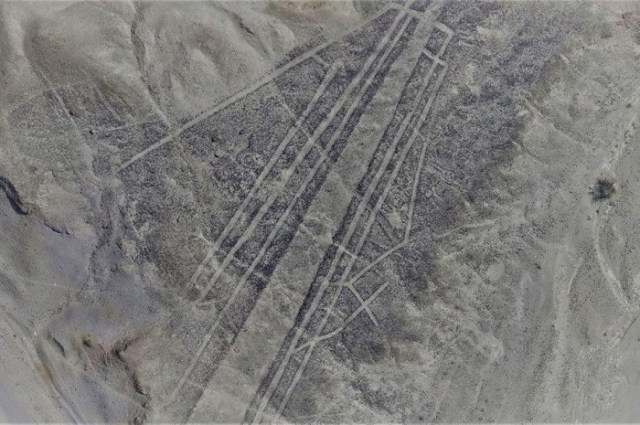 Many of the newly discovered Nasca lines are too faint to be seen by the human eye, yet visible when captured in low altitude by a drone camera. PHOTOGRAPH COURTESY LUIS JAIME CASTILLO, PALPA NASCA PROJECT