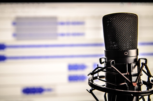 Microphone and audio software