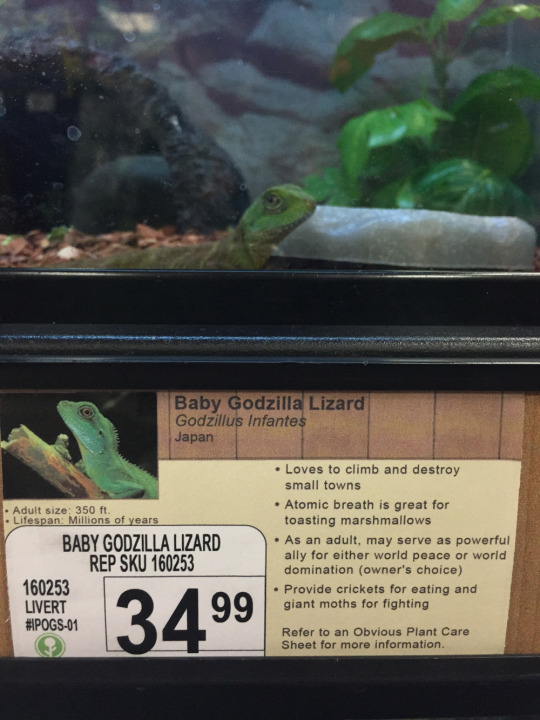 Pet Store Animals That Were Hilariously Renamed (8)