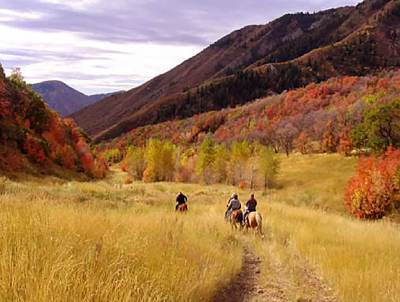 Hobble Creek Canyon
