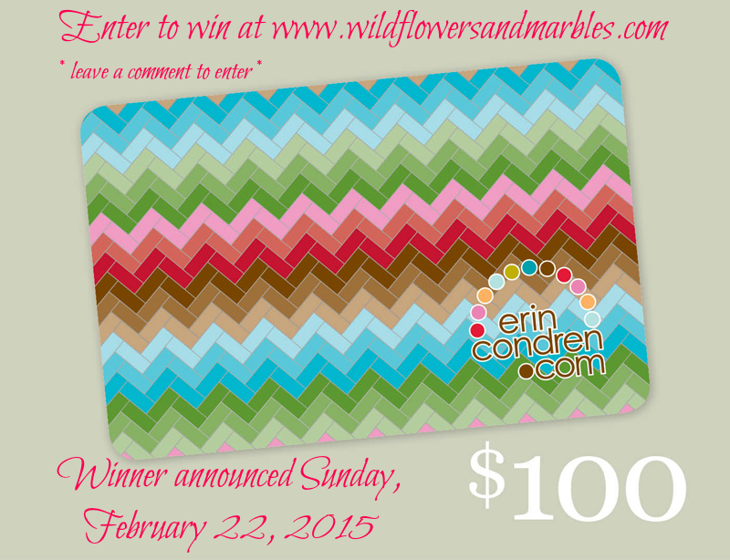 Erin Condren $100 gift card giveaway