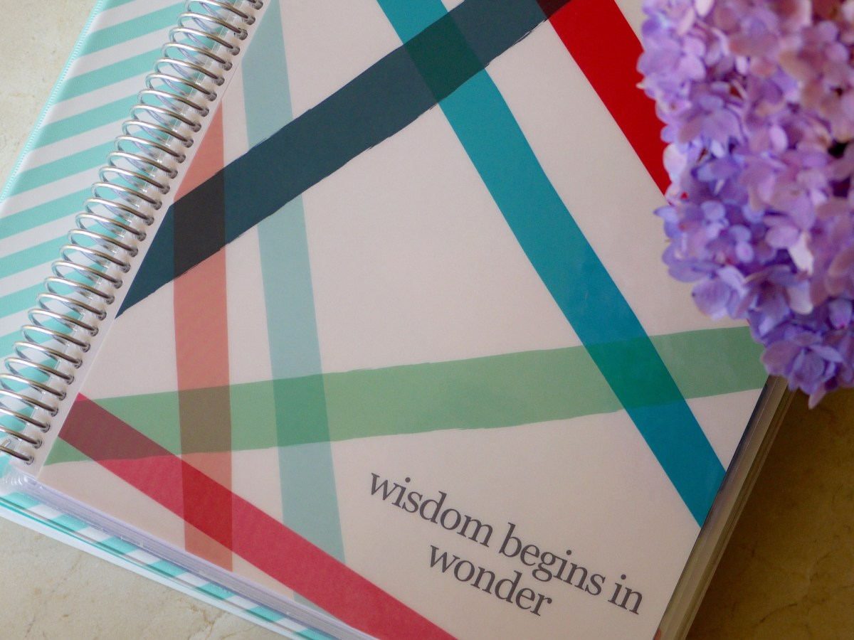 Morning Basket Series: Using an Erin Condren Teacher Planner